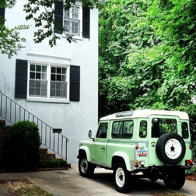 DEFENDER GREEN TREES